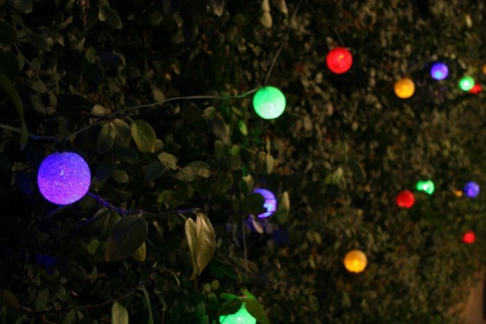 Solar String Lights For Garden : Best 25+ Solar string lights ideas on Pinterest Solar garden lights, Solar lights and Solar ...
