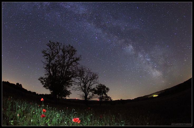 """A Spring Night of Bakony"" by Tamas Ladanyi (TWAN)"