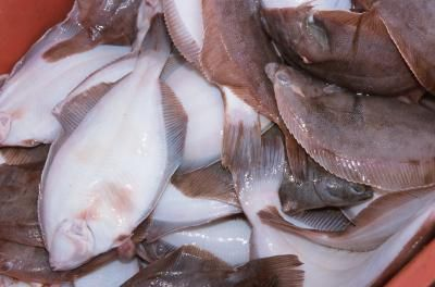 How to Cook Flounder Fillets
