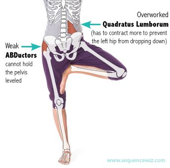 neglecting your hip abductors can mess up your walk sleep