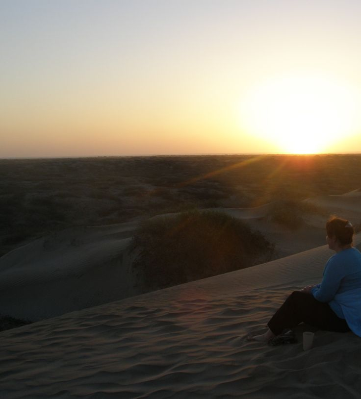 New article: Noise vs silence - why we don't consider the effect of environmental noise pollution enough - https://wp.me/p90hGP-4a . Pic taken in the Mexican desert looking over to the sun going down over the Pacific after an amazing day spent whale watching