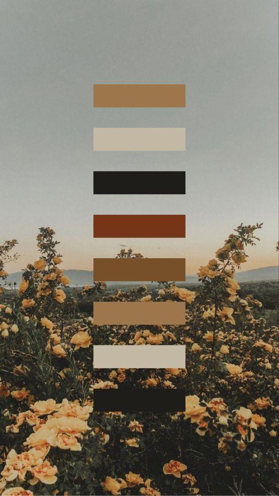 Website Design in 2020 | Nature color palette, Color ...