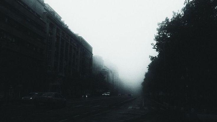 Morning Mistique