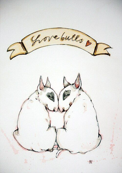Bull terriers in love. Drawing