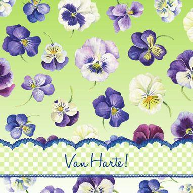 Vallende paarse viooltjes- Greetz