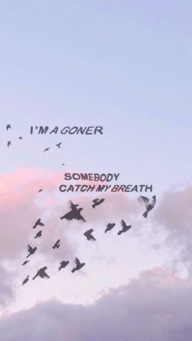 I'm a goner | someone catch me | free birds