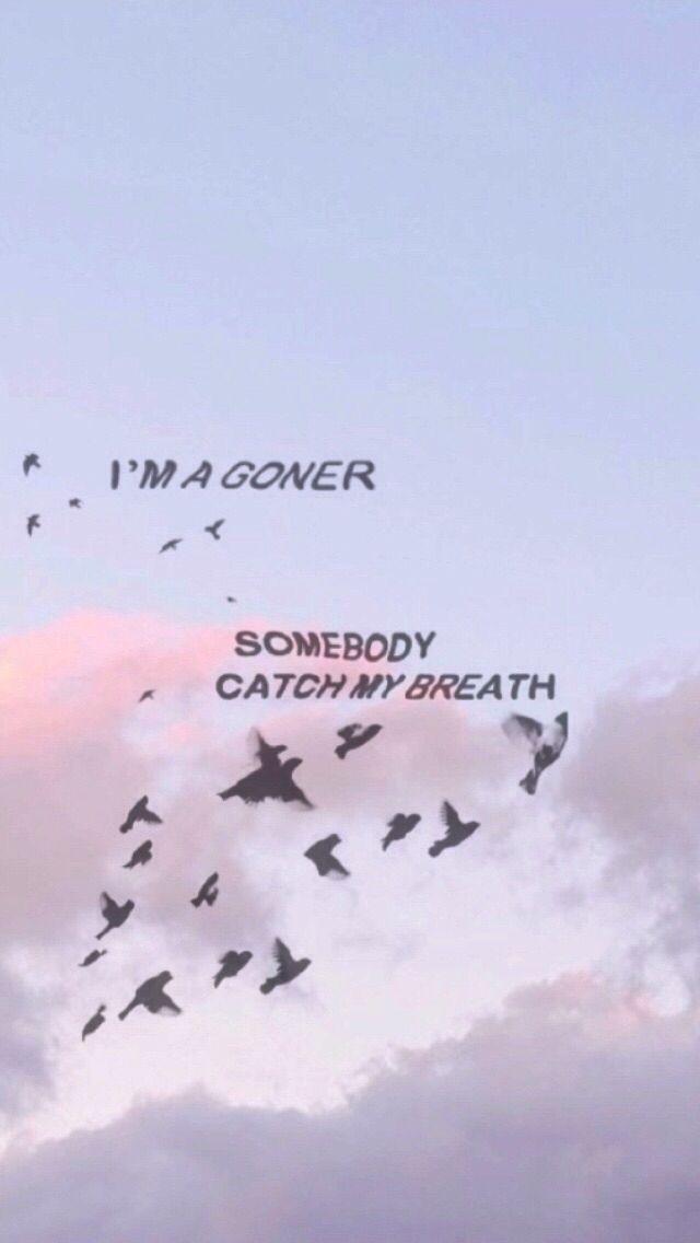 I'm a goner | someone catch me | free birds