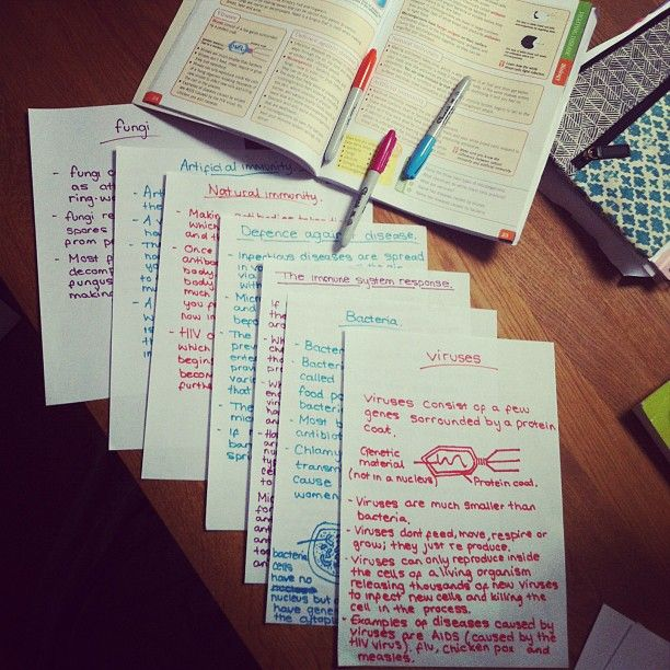 #studying #Notes Order a custom essay from the best! http://www.paperhelp.org/?pid=1839