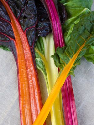 """'Five Color Silverbeet"""" Swiss Chard — gorgeous! Click for more heirloom plant ideas: http://www.midwestliving.com/garden/featured-mwl/seed-savers-exchange/#page=4"""
