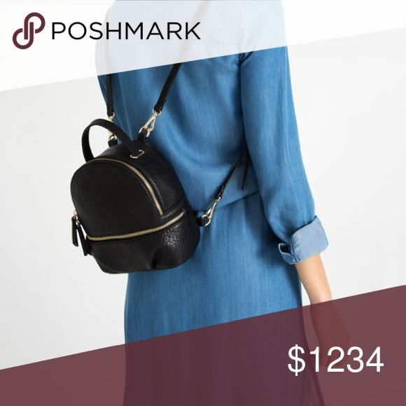 ISO Zara Mini leather backpack Sold out online and stores. Looking for the exact mini backpack (not willing to purchase more than the original price) New/good condition please. Zara Bags Backpacks