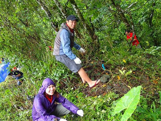 University of San Carlos Lions Club (Philippines)   Lions Environmental Projects   Pinterest   Lion, Projects and San Carlos