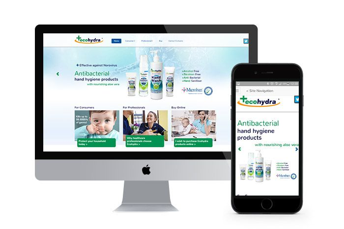 Responsive web design and ongoing SEO for Ecohydra