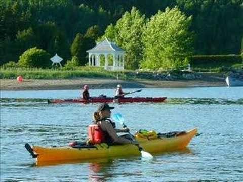 Excursions en kayak et en zodiac au parc du Bic