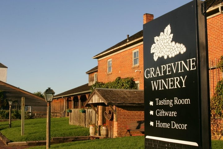 The Grapevine Winery Just One Of The Many Winery In The
