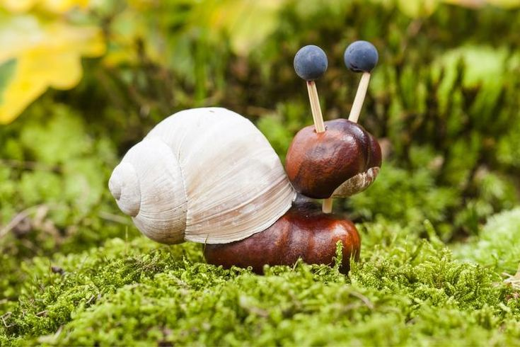 Crafting idea for autumn – chestnut snail