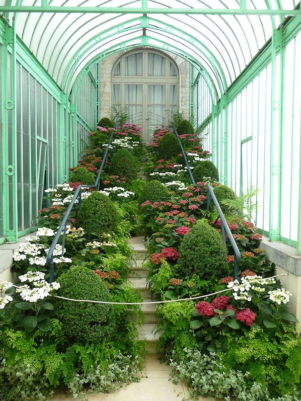 Visite Des Serres Royales De Laeken Belgique Jardin D Hiver