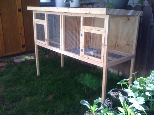 52 best images about rabbit chicken coop hutch ideas for Rabbit enclosure design