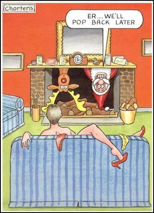 Funny Christmas Cartoon -