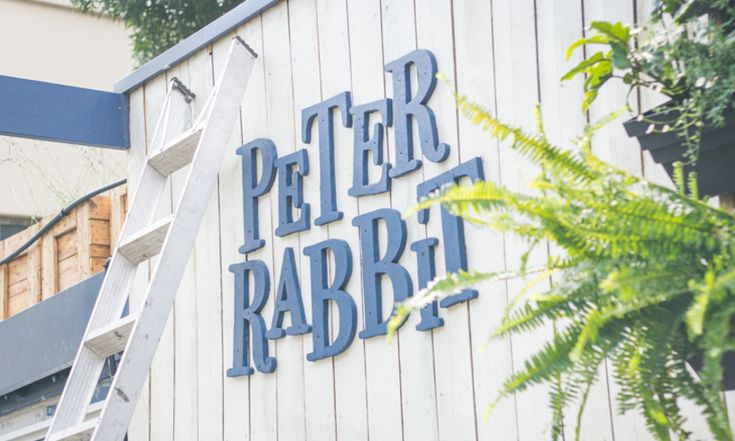 CityMag-peter-rabbit-5
