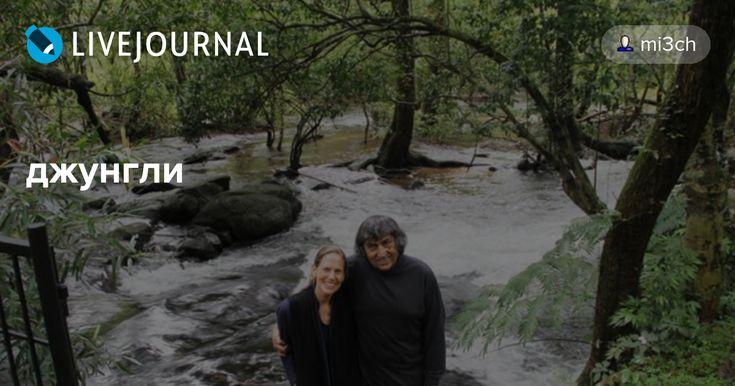 Как сделать рай на земле: за 25 лет пара превратила пустыню в джунгли В 1986 году Анил и Памела Малотра отправилась в Индию на похороны отца Анила, и они были поражены до самого сердца уровнем загрязнения окружающей среды в этой стране. Казалось, всем абсолютно наплевать на исчезающие леса, на…