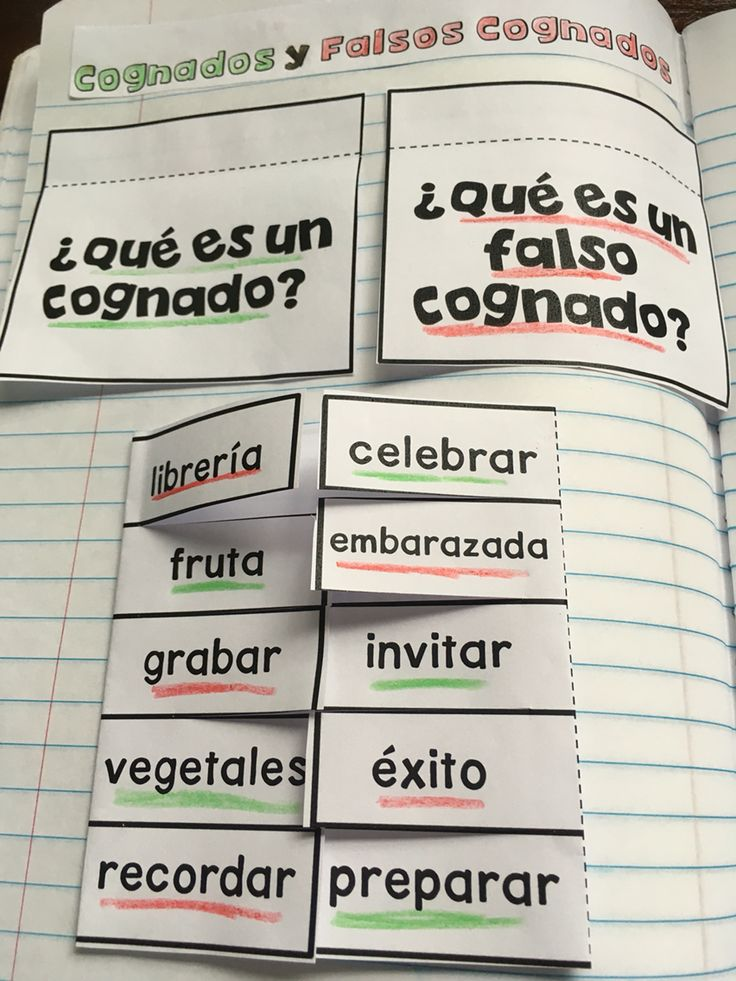 Spanish Interactive Notebook: Cognates and False Cognates
