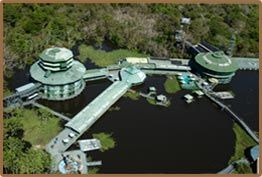 The Ariau Amazon Towers- The Largest treetop hotel in the world. Brasil. I want to stay here! Eco Tourism :)
