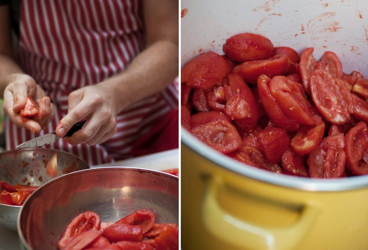 tomate san marzano pot