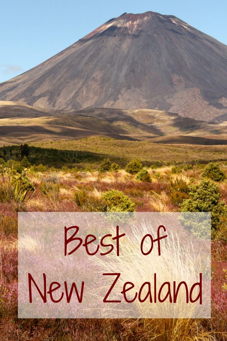 Best New Zealand Travel Images On Pinterest Traveling - Kid friendly new zealand 6 things to see and do