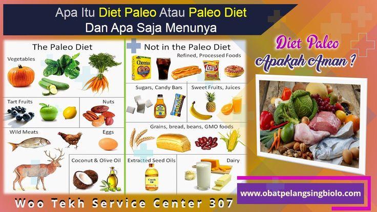 Apa Itu diet paleo | Tata Cara Diet Paleo | Pengertian Diet Paleo | Daftar Menu Diet Paleo | Menu Diet Paleo Indonesia | Apakah Diet Paleo Aman