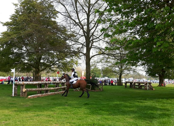 Badminton Horse Trials 2016 - Cross Country. (Photo: WendyJames ● May 2016)
