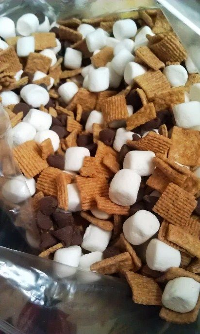 Smores mix! Made this for camping snack and the kids loved it! Golden grahams, chocolate chips and mini marshmallows!