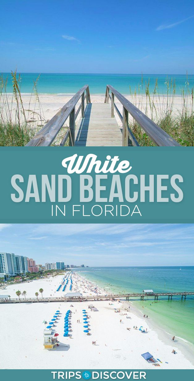 13 White Sand Beaches In Florida To Dig