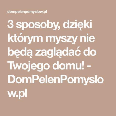 3 sposoby, dzięki którym myszy nie będą zaglądać do Twojego domu! - DomPelenPomyslow.pl