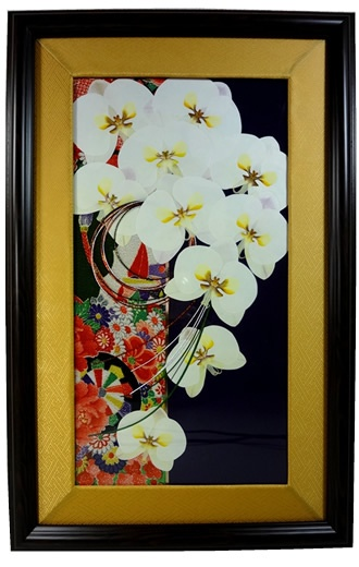 $935.00  Purple Moth Orchid