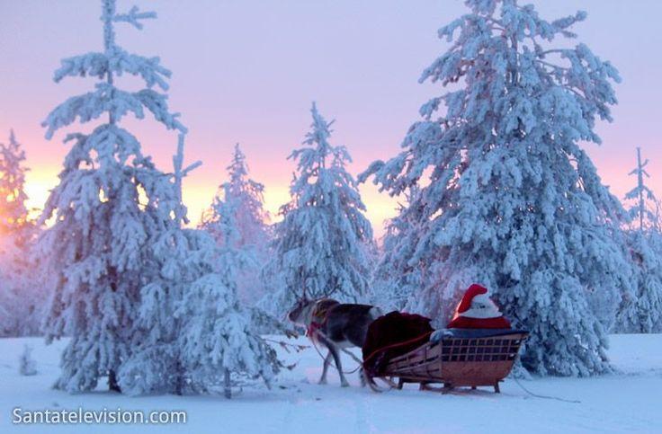 Papai Noel / Pai Natal e suas renas no trenó na Lapônia na Finlândia são como se eu voltasse a ser criança ......