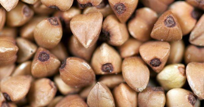 Ricette con grano saraceno: 3 idee per i dolci