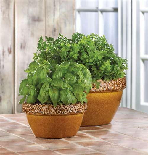 Garden Accessories -- Tuscan Courtyard Planters -- Sun-kissed terra cotta brings the warmth of the Tuscan countryside to your home, highlighting every elegant detail of these classic ceramic planters.  A timelessly colorful addition to your outdoor decor!