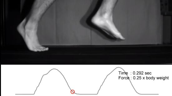 Interested in Barefoot Running? Here are some tips from a Harvard study on how to do it properly.