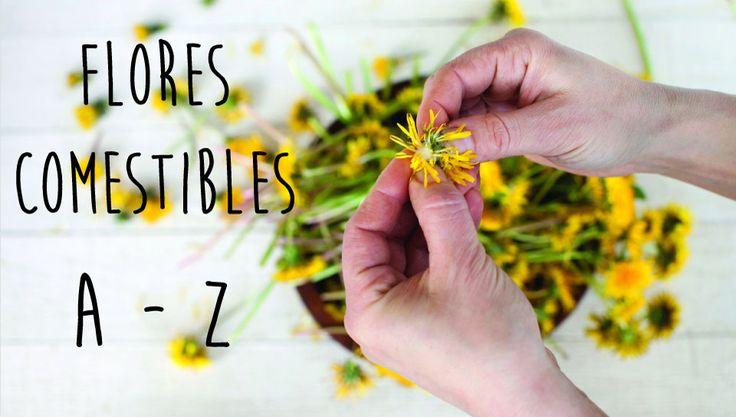 ¡Piérdele el miedo a cocinar con flores con esta tabla de sabores! Consulta aquí para qué se usan las flores más populares en la cocina.     Albahaca Se utiliza en los mismos casos que la planta. Todaslas recetas que lleven albahaca admiten también laflor de albahaca, de ese