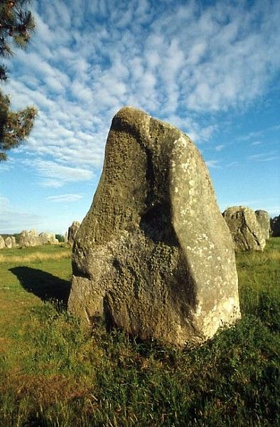 Carnac, Brittany  Megalithic stone alignments of Carnac, rows of menhirs unique in the world.  This menhir belongs to the alignment of Kermario, one of the three main alignments of megaliths at Carnac in Brittany.