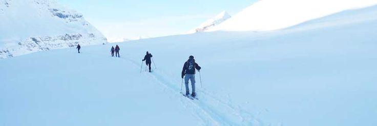 Inverno no lago O'Hara. Montanhas Rochosas, Parque Nacional de Yoho, Columbia Britânica, Canadá.