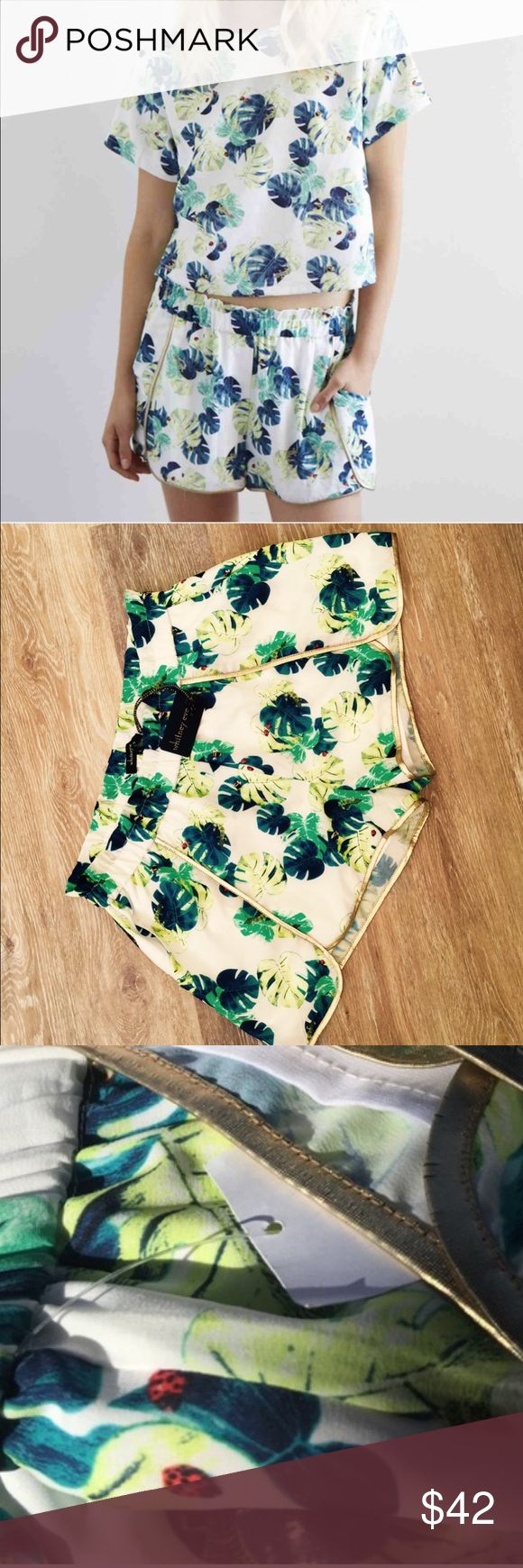 """WHITNEY EVE PALM PRINT PULL ON SHORTS Beautiful Gold Trim On These Palm Print Pull Up Shorts From Whitney Eve🔹NWT 🔹Lined🔹Pockets🔹Size Large: 30"""" Elastized Waist That StretchesTo 42"""",  8"""" rise, 11.5"""" length🔹Fabric: 100% Polyester🔹Machine Wash Cold🔹No Trades🔹Smoke Free Home🔹Thank you for stoping by💕 Whitney Eve Shorts"""
