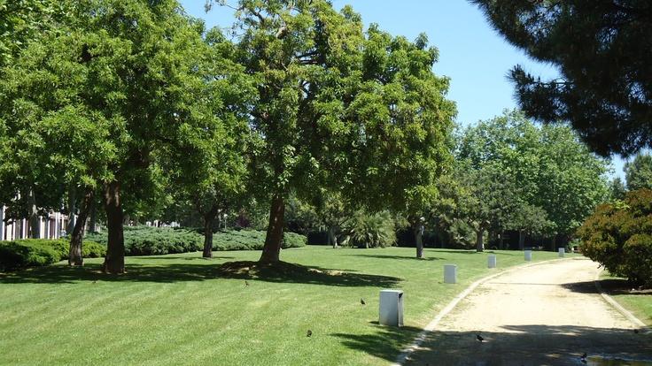 Jardines de Vila Olímpica de Barcelona