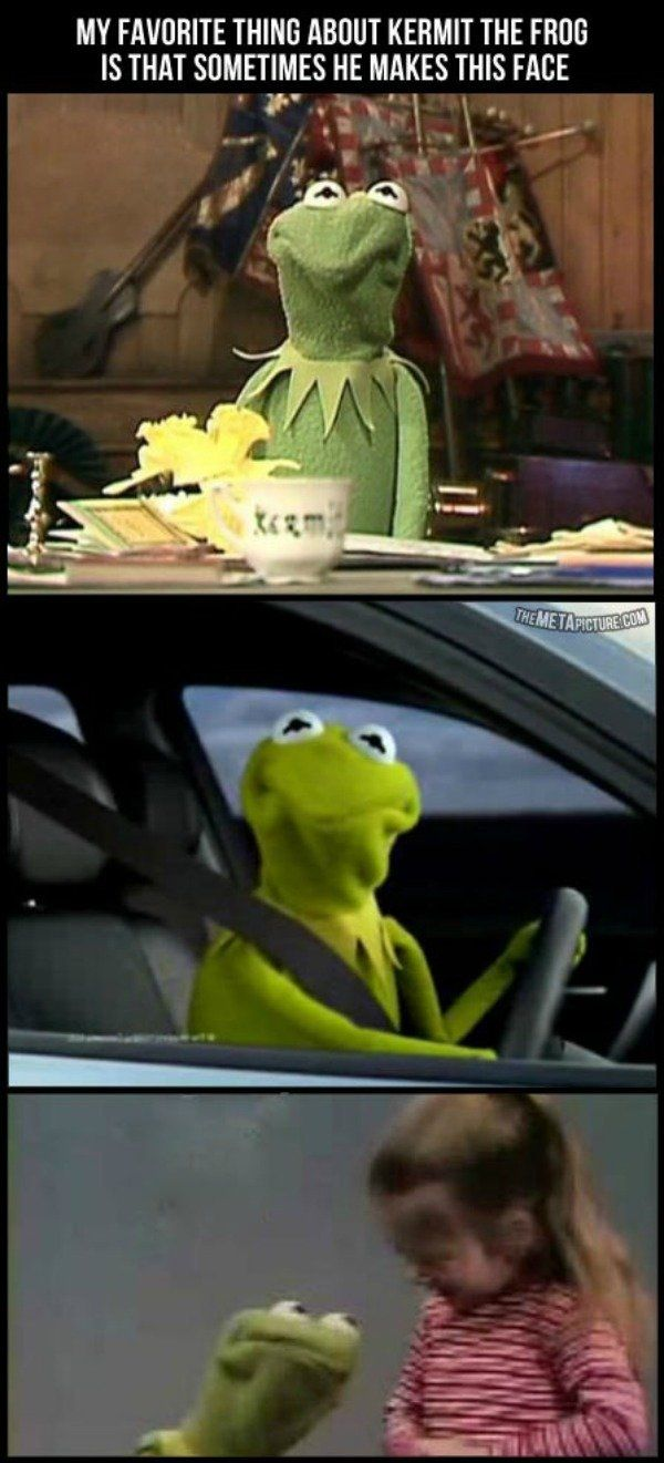 """I love the Kermit the frog face!! It's like he's saying, """"REALLY?  J-JUST REALLY??"""""""