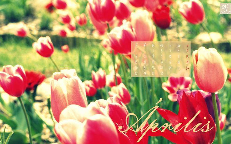 2015. április ingyen letölthető naptáras háttérkép - Masni / 2015. April free desktop calendar to download