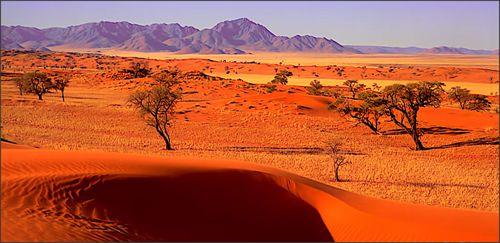 Schitterende woestijnlandschap in Namibië. #Namibië #woestijn