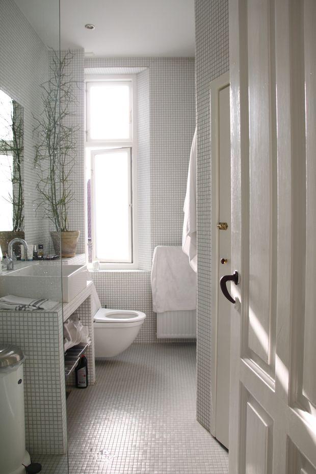 white bathroom with plant