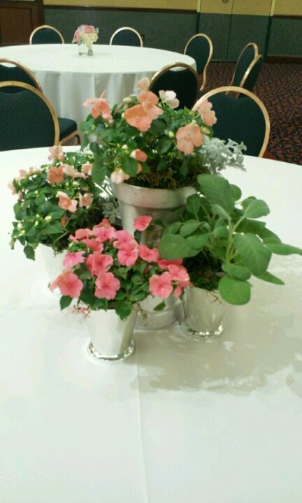plant grouping in brides colors