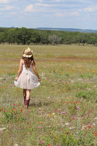 country/ wildflowers/ hill country/ photography/ Fredericksburg, Tx