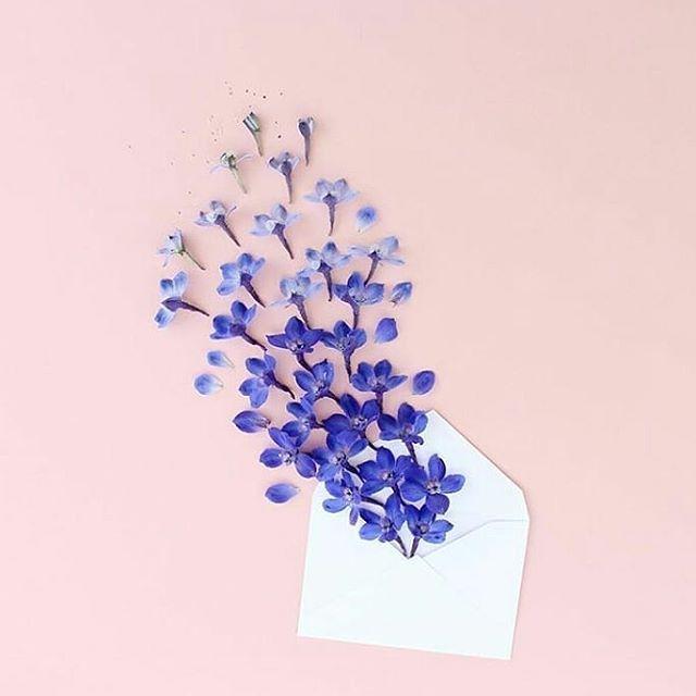 Sending flowers   Happy Weekend everyone! .  @caroline_south . . . .  #rebranding #abbeylanefarm #greenbeauty #naturalskincare #indiebeauty #madeinvancouver #beautyfinds #naturalskincare #ecobeauty #ecoluxe #botanicalbeauty #botanicals #flowers #madeincanada #etsywholesale #farmtoskin #sustainable #green #ecofriendly #fresh #nourishskin #selfcare #skincareroutine #beautyfinds #greenbeautyblogger #minimalism #mindbodysoul #wellnessjourney